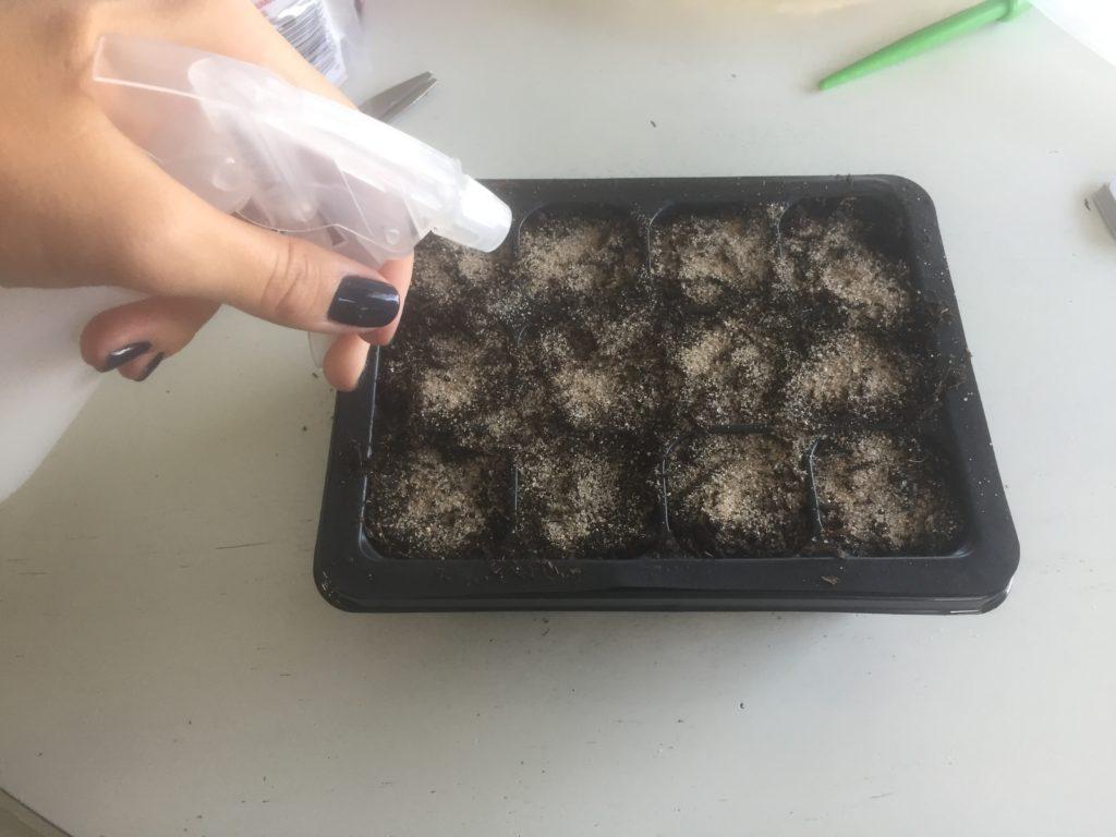 Moisten Soil