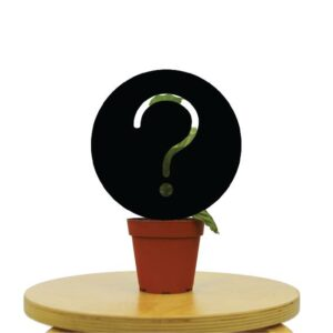 Mystery Plant Box
